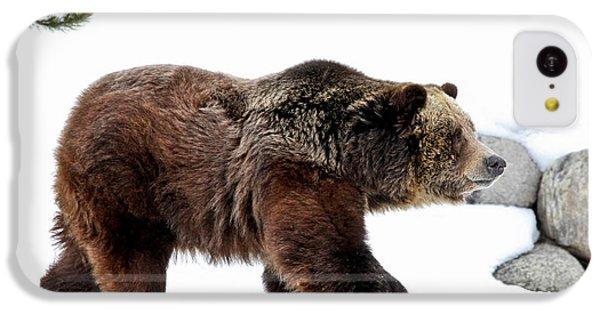 Brown Bear iPhone 5c Case - Winter Bear Walk by Athena Mckinzie