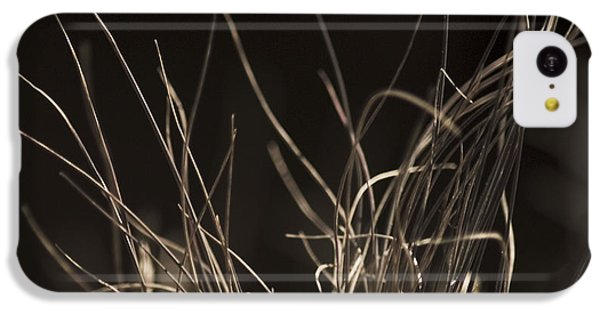 IPhone 5c Case featuring the photograph Winter Grass 2 by Yulia Kazansky