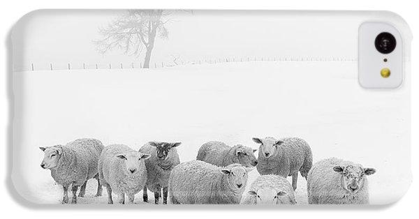 Winter Woollies IPhone 5c Case
