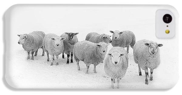 White iPhone 5c Case - Winter Woollies by Janet Burdon