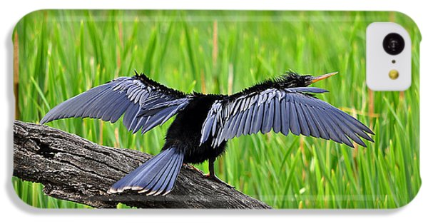 Wonderful Wings IPhone 5c Case by Al Powell Photography USA