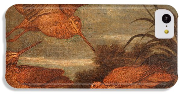 Woodcock At Dusk, Francis Barlow, 1626-1702 IPhone 5c Case by Litz Collection