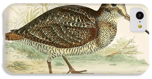 Woodcock IPhone 5c Case by Beverley R Morris