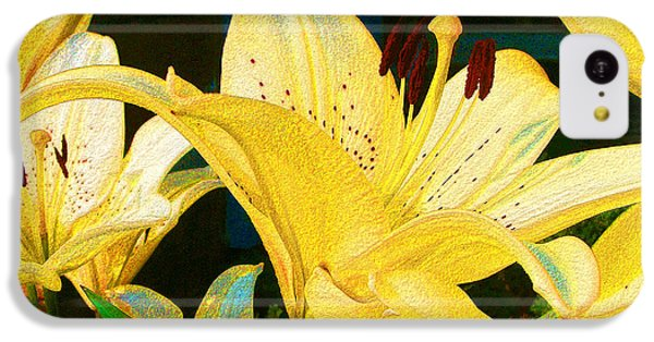 Yellow Lilies IPhone 5c Case