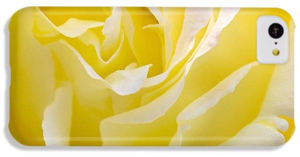 Rose iPhone 5c Case - Yellow Rose by Svetlana Sewell