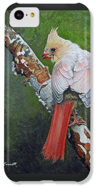 Young Cardinal  IPhone 5c Case by Ken Everett