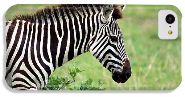 Zebra IPhone 5c Case by Aidan Moran