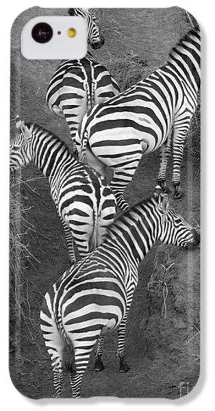 Zebra Design IPhone 5c Case by Carol Walker