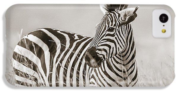 Zebra Masai Mara Kenya IPhone 5c Case