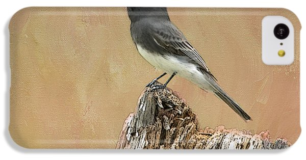 Black Phoebe IPhone 5c Case by Betty LaRue