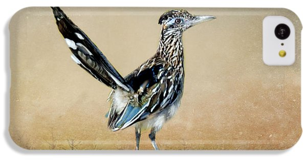 Greater Roadrunner IPhone 5c Case