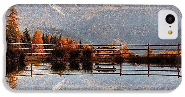 Amazing iPhone 5c Case - Reflections by Luisa Azzolini