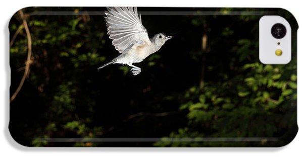 Tufted Titmouse In Flight IPhone 5c Case