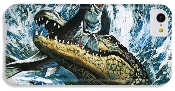 Alligator Eating Fish IPhone 5c Case by English School