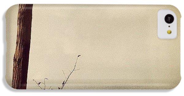 Orange iPhone 5c Case - Calm Waters by Michelle Calkins
