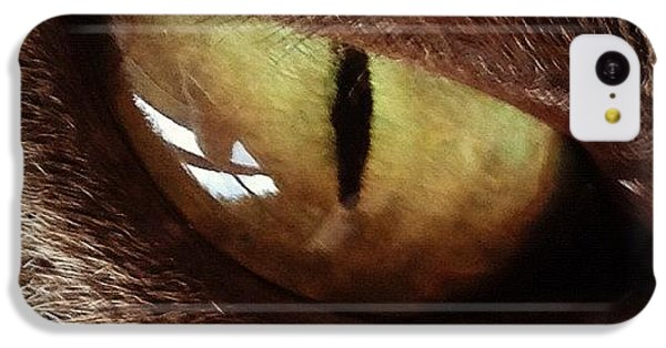 Cat Eye IPhone 5c Case