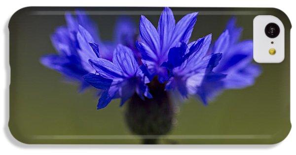 Cornflower Blue IPhone 5c Case