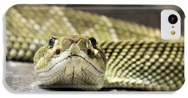 Crotalus Basiliscus IPhone 5c Case by JC Findley