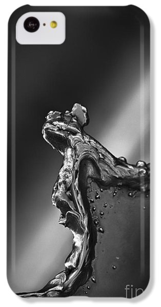 Cutting Edge Sibelius Monument IPhone 5c Case by Clare Bambers