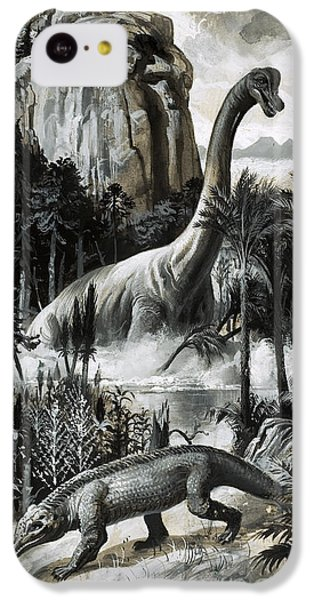 Dinosaurs IPhone 5c Case