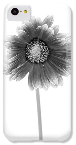 Gerbera In Black And White IPhone 5c Case by Sebastian Musial