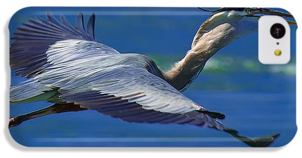Gliding Great Blue Heron IPhone 5c Case by Sebastian Musial