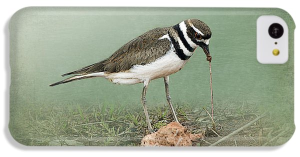 Killdeer And Worm IPhone 5c Case by Betty LaRue