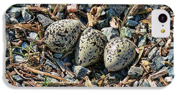 Killdeer Bird Eggs IPhone 5c Case
