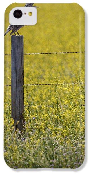 Meadowlark Singing IPhone 5c Case by Randall Nyhof