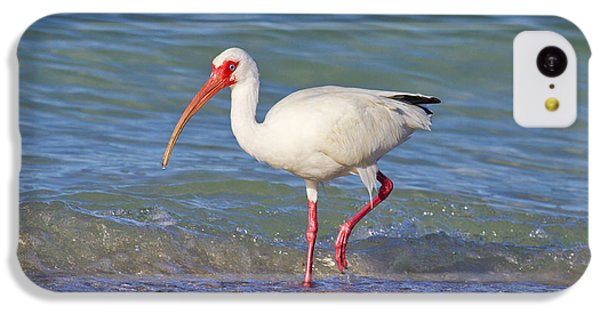 Ibis iPhone 5c Case - One Step At A Time by Betsy Knapp