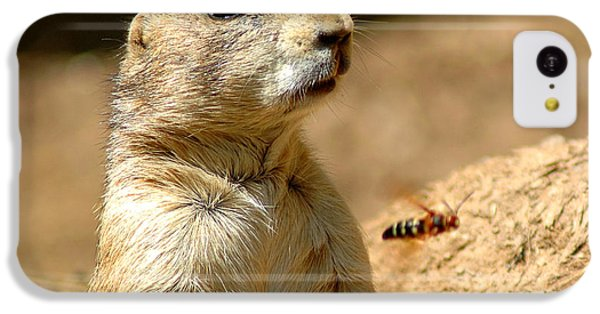 Prarie Dog Bee Alert IPhone 5c Case by LeeAnn McLaneGoetz McLaneGoetzStudioLLCcom