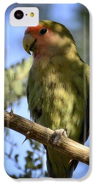 Pretty Bird IPhone 5c Case by Saija  Lehtonen