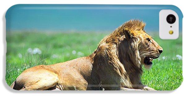 Pride IPhone 5c Case by Sebastian Musial