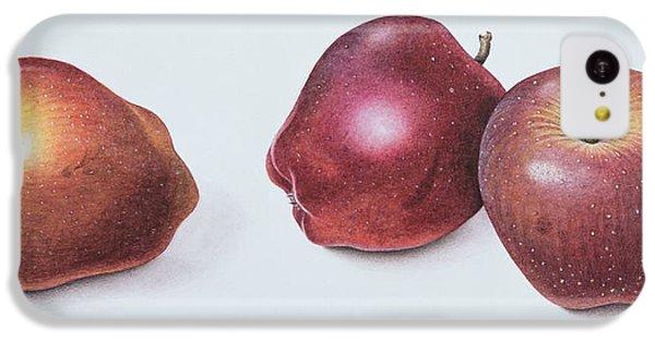 Red Apples IPhone 5c Case by Margaret Ann Eden