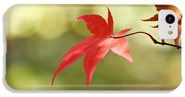 Red Leaf. IPhone 5c Case by Clare Bambers