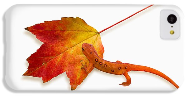 Red Spotted Newt IPhone 5c Case by Ron Jones