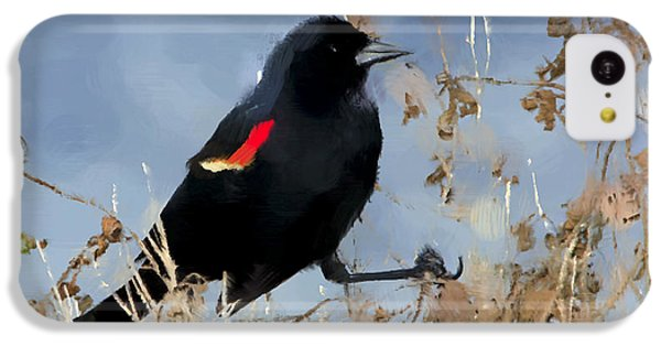 Redwing Blackbird IPhone 5c Case by Betty LaRue