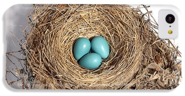Robins Nest With Eggs IPhone 5c Case by Ted Kinsman