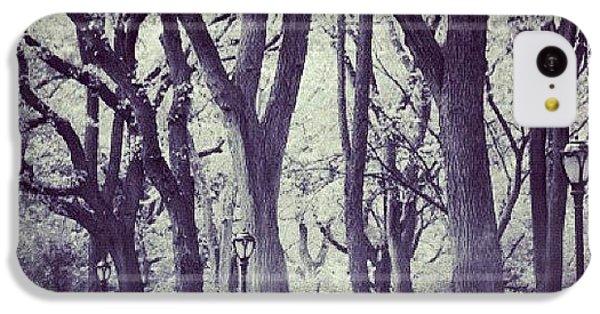 City iPhone 5c Case - Seasons Change by Randy Lemoine