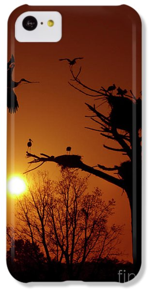 Stork iPhone 5c Case - Storks by Carlos Caetano