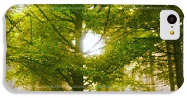 Sunny iPhone 5c Case - Summerskyforest by Kim  Nyheim