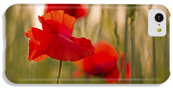 Sunset Poppies. IPhone 5c Case by Clare Bambers