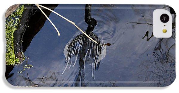 Swimming Bird IPhone 5c Case by David Lee Thompson