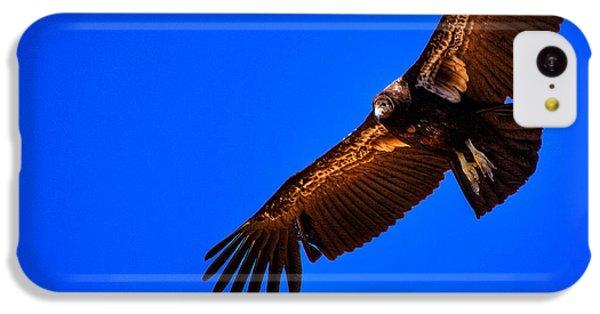 The California Condor IPhone 5c Case