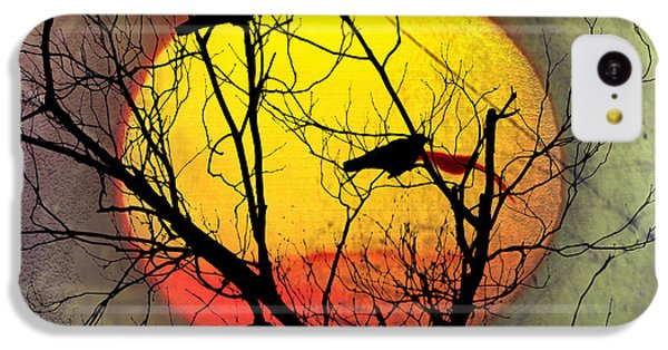 Three Blackbirds IPhone 5c Case by Bill Cannon