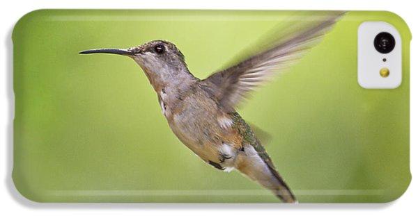 Humming Bird iPhone 5c Case - Winging It by Betsy Knapp