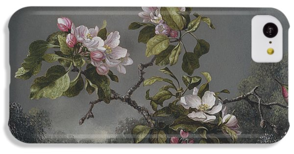 Humming Bird iPhone 5c Case -  Apple Blossoms And Hummingbird by Martin Johnson Heade