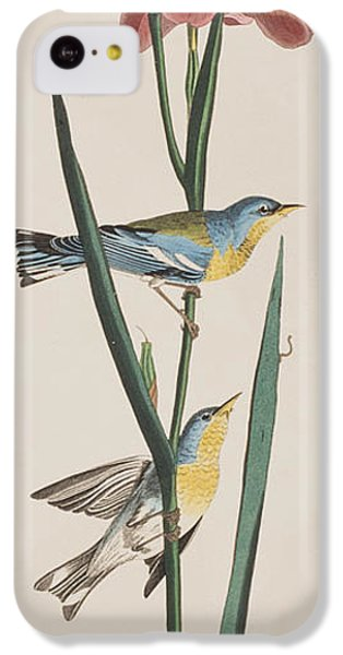 Blue Yellow-backed Warbler IPhone 5c Case by John James Audubon