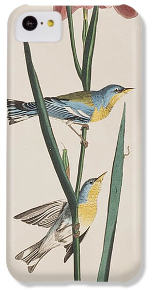 Blue Yellow-backed Warbler IPhone 5c Case