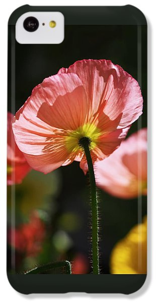 Icelandic Poppies IPhone 5c Case by Rona Black